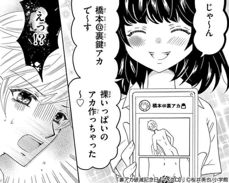 裏アカ破滅記念日【マイクロ】
